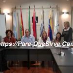Para Qué Sirve El Mercosur – Ventajas y Desventajas