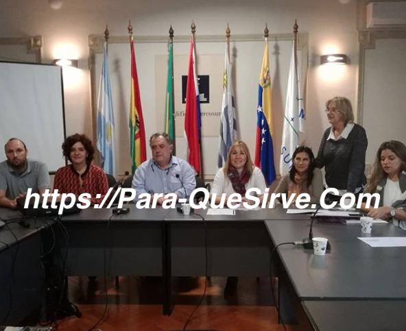 Para Qué Sirve El Mercosur - Ventajas y Desventajas