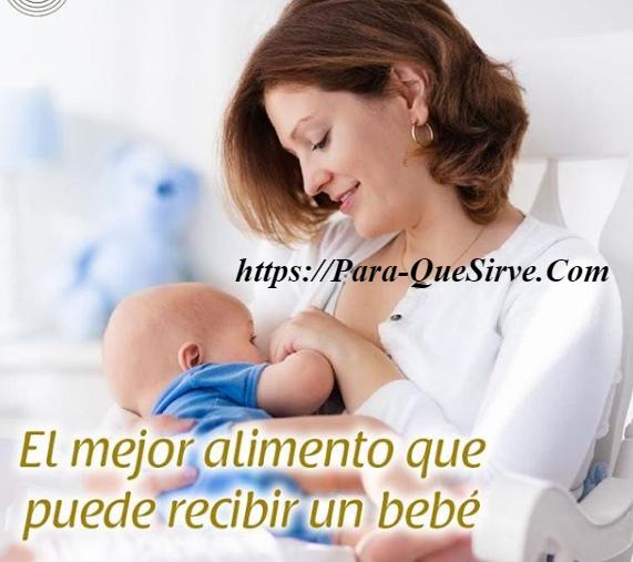 ¿Para Qué Sirve La Lactancia Materna Beneficios Para La Madre Y El Bebé?