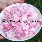 Para Que Sirven Los Pétalos De Rosa Propiedades Para El Cabello