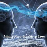 Para Qué Sirven Las Neuronas En El Ser Humano