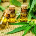 ¿Para Qué Sirve El Aceite De Cannabis Beneficios Para Dormir?