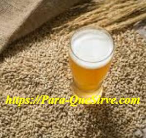 ¿Para Qué Sirve La Levadura De Cerveza En La Masa Muscular?
