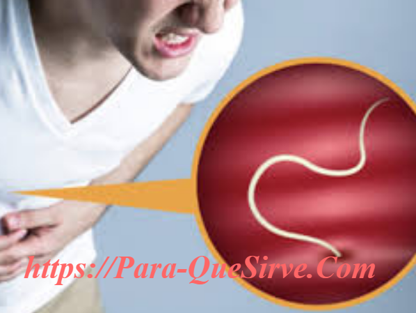 Para Qué Sirve El Tratamiento De Parásitos Intestinales En Adultos