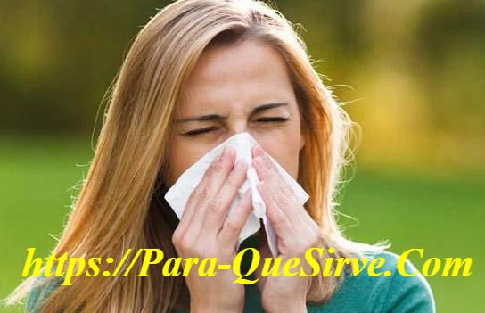 Cómo Quitar La Alergia A La Humedad