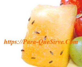 Cómo Eliminar Plaga De Moscas De La Fruta En Casa