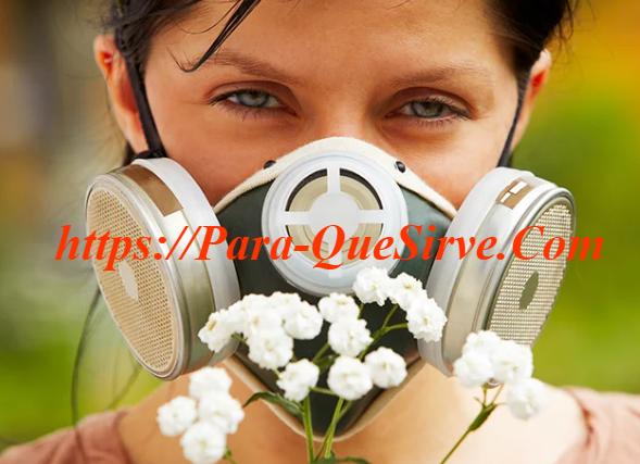 Alergia Al Polen Síntomas Y Tratamiento A Seguir