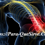 Radiculopatía Lumbar Tratamiento Fisioterapéutico.